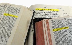 bible-languages-600.jpg